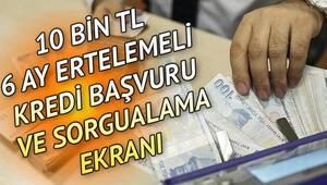 10 bin TL temel ihtiyaç kredi başvurusu kabul edildi mi Halkbank, VakıfBank, Ziraat Bankası kredi başvuru sorgulama