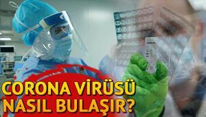 Corona virüsü belirtileri nelerdir, nasıl bulaşır ve nasıl anlaşılır Koronavirüs baş ağrısı ve mide bulantısı yapar mı İşte korona virüs belirtileri