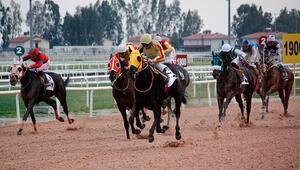 At yarışları ne zaman başlıyor