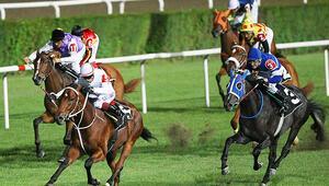 Serdal Adalıdan at yarışlarıyla ilgili açıklama: Başlamasını bekliyoruz