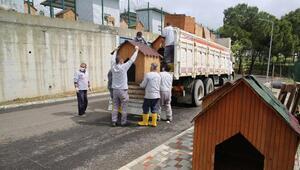 Adanada sokak hayvanları için modern barınak faaliyete geçiyor