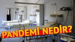Pandemi nedir Pandemi hastaneleri ne demek Pandemi hastalıkları neler