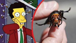 """Simpsonlar ABD'deki """"Katil arıları da bildi iddiası"""