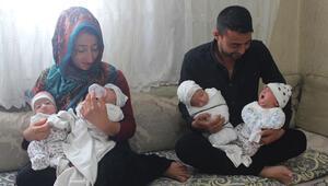 Genç çiftin dördüz bebek sevinci... Bez ve mamaya yetişemiyoruz