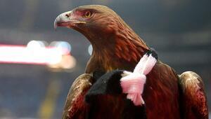 Koronavirüs onu da vurdu Atillaya Bundesliga maçında uçuş izni verilmedi...