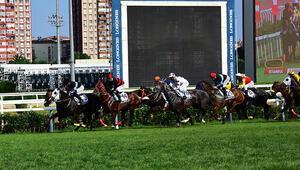 Atçılık camiası yarışların başlatılması için tüm tedbirleri ile hazır