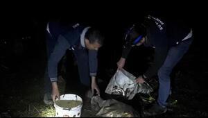 Vanda ele geçirildi 350 metrelik ağ ile 50 kilo inci kefali...