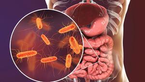 Koronavirüs bağırsaklarda çoğalıyor, sindirim sistemini de etkiliyor