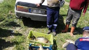 Kırşehirde kaçak balık avı denetimi