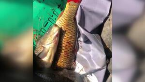 Beyşehir Gölünde dirgenle balık avlayan 4 kişiye ceza