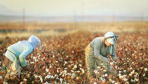 Mevsimlik işçilere haziranda esnetme
