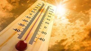 Son dakika... Afrika sıcağı etkili olacak Profesörden ısı çarpması uyarısı