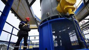 Rosneft zarar etti