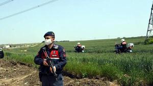 İstanbul- Tekirdağ sınırındaki tarlalarda, jandarmadan motosikletli denetim