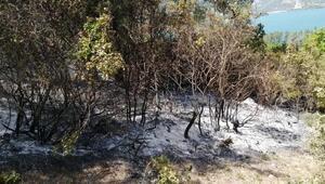 Adanada gece çıkan orman yangını bu sabah söndürüldü