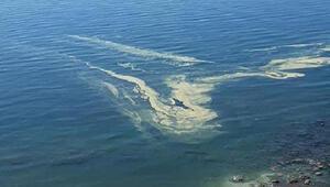Mersinde denizdeki renk değişikliğinin sebebi ortaya çıktı