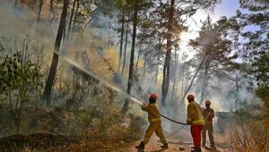 OGM, 18 bin 545 personeli ile orman yangınlarına hazır