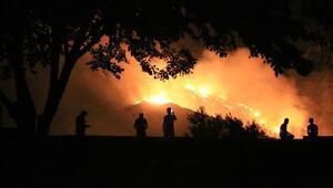 Orman Genel Müdürlüğü yangınların yüzde 88inin insan kaynaklı olduğuna dikkati çekti