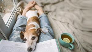 Biyografi Sevenlere: Karantinada Mutlaka Okumanız Gereken Biyografi Kitapları