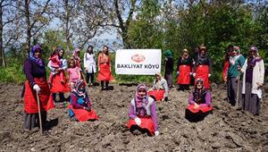 Reis Gıdadan Bakliyat Köyü Projesi