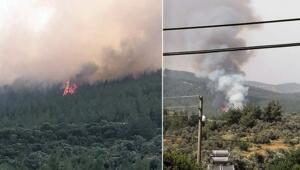 Son dakika haberler: Muğlada orman yangını