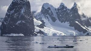 Antartikadaki eriyen kar yüzeyi yosun örtüleriyle kaplanıyor