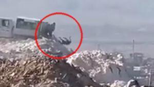 Denizlideki çöplükte infial yaratan görüntüler