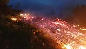 Bursada orman yangını büyük çapta hasara yol açtı