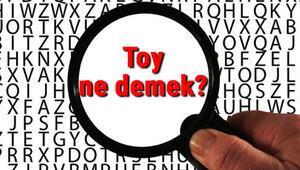 Toy ne demek Toy nedir Toy TDK kelime anlamı