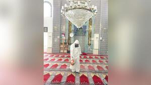 Camilerde yeni dönem: Evde abdest al, camiye maskesiz girme