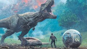 Dinozorlar ve canlıların yüzde 75i nasıl yok oldu