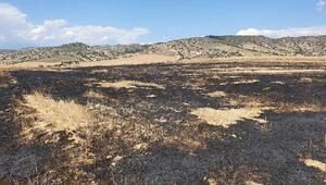 Buğday tarlalarında yangınla ilgili kundaklama şüphesi