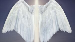 Günün melek kartını seçtiniz mi
