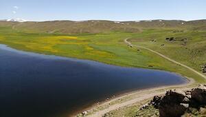 Vanın yeşil ve mavi güzeli Keşiş Gölü hayran bırakıyor