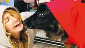 Yonca Evcimik, köpeği Bobo'yu kaybetti