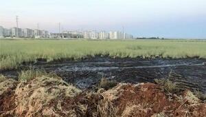 Yerleşim yerleri yakınındaki arazilere kimyasal atık dökenlere suçüstü