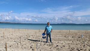 Çeşme Ilıca Plajı'na sosyal mesafe halatları çekildi