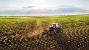 Tarım ve gıda için yeni yasa geliyor: Hobi bahçesine yasak, sahte gıdaya hapis