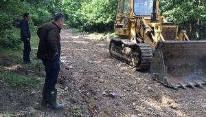 Longoz Ormanlarında yol onarım ve çevre düzenlemesi başladı