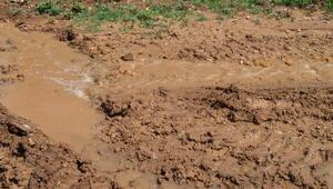 Ağaçlarını sulamak için sondaj yaparken, bahçesinden tuzlu ve sodalı su çıktı