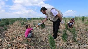 Mevsimlik tarım işçileri ve çocuklarına süt dağıtıldı