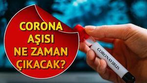Corona virüsü (koronavirüs) aşısı ne zaman çıkacak  Türkiye ve Rusyadan kritik adım