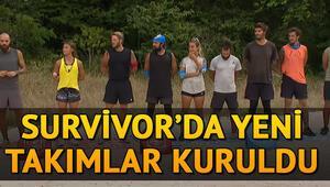 Survivor yeni takımlar belli seçildi: Survivor 2020de takım kaptanı kimler oldu İşte kırmızı ve mavi takım