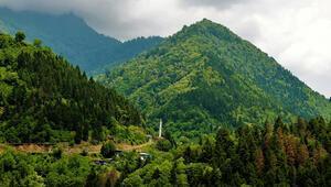 Karacabey: Her insan doğaya 210 ağaç borçlu