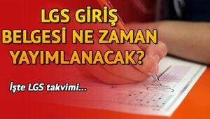 LGS sınav giriş belgesi ne zaman yayınlanacak Hangi konular sorulacak MEB sınav yerleri için tarih verdi