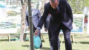 Cumhurbaşkanı Erdoğan, Ankara Millet Bahçesini inceledi