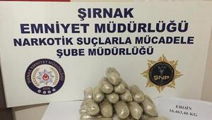 Şırnakta kaçakçılık operasyonu: 13 gözaltı