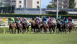At yarışları ne zaman başlıyor TJK tarih verdi