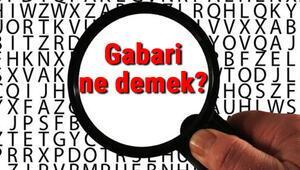 Gabari ne demek Gabari nedir Gabari TDK kelime anlamı