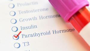PTH (Parathormon) nedir PTH değeri kaç olmalıdır Düşüklüğü ile yüksekliği nedenleri ve belirtileri